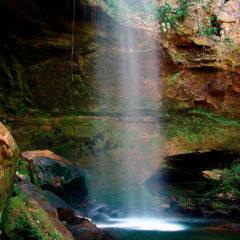 Canyon Suçuapara