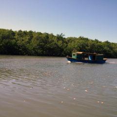 Delta Parnaiba