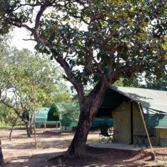 SAFARI CAMP KORUBO